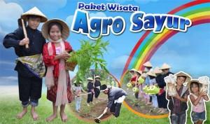 paket-wisata-edukasi-agro-agrosayur