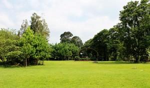 lapangan-ciliwung-taman-wisata-matahari