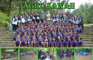 wisata-edukasi-agro-sawah-400px